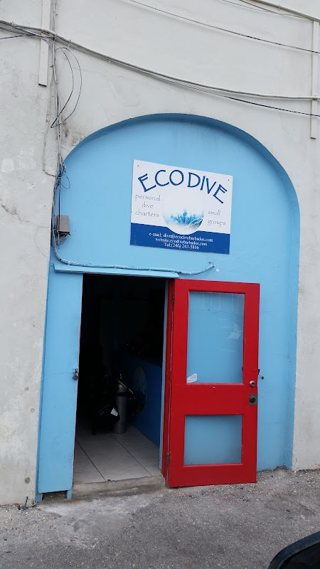 Eco Dive BARBADOS의 사진